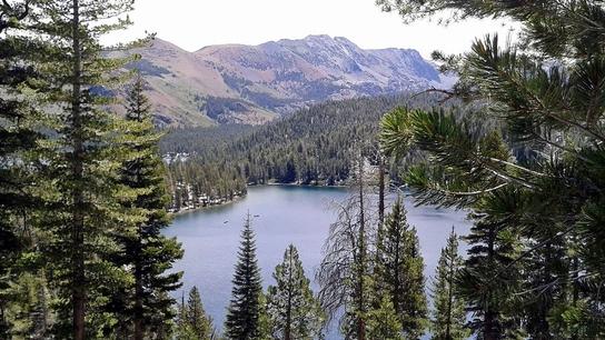 Near Mammoth Lake - Kalifornien
