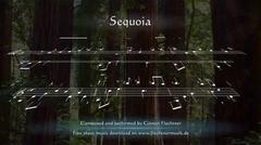 Günter Flechtner: Sequoia